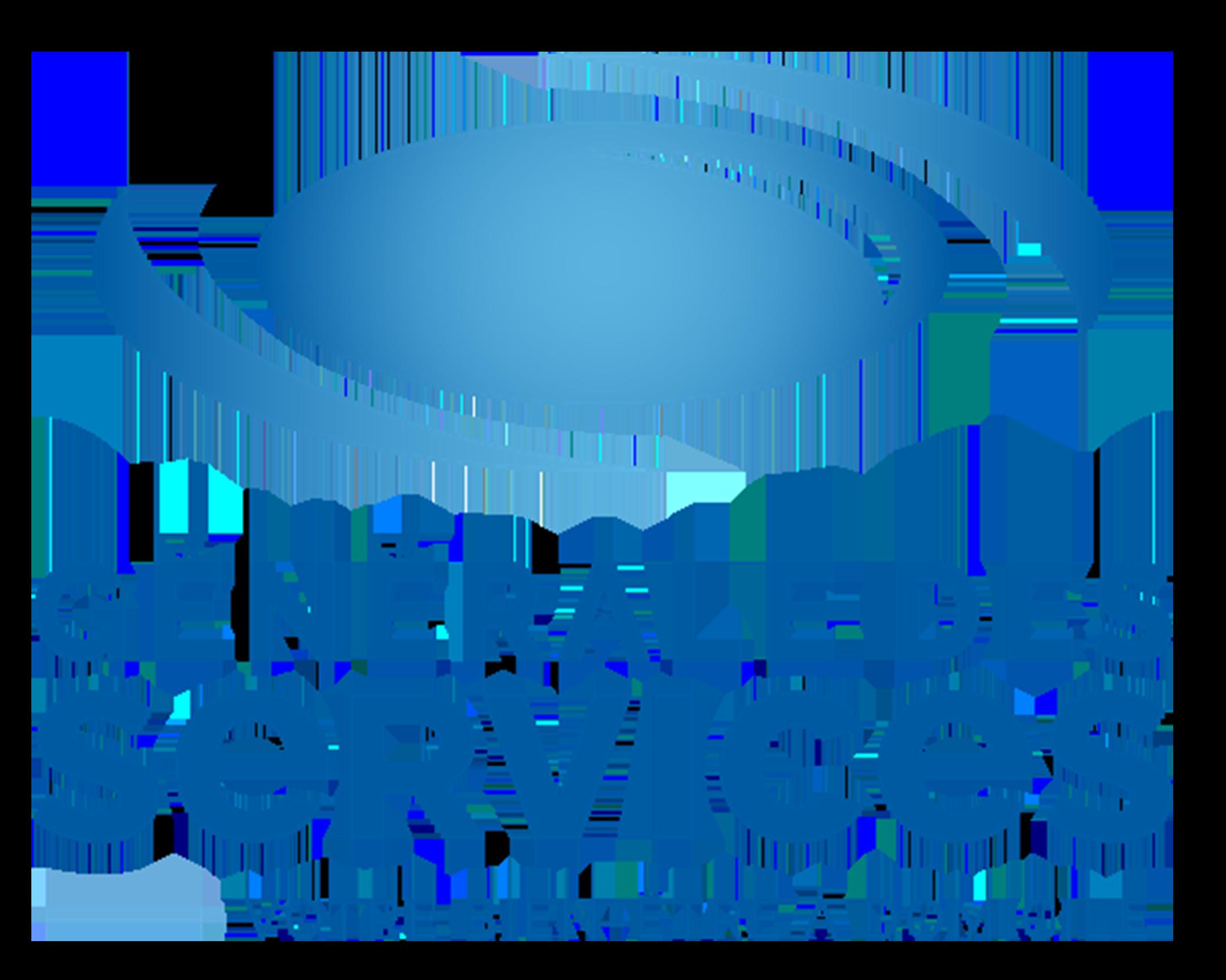 GENERALE DES SERVICES