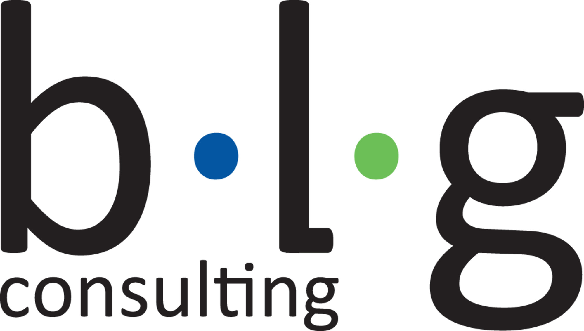 BLG CONSULTING